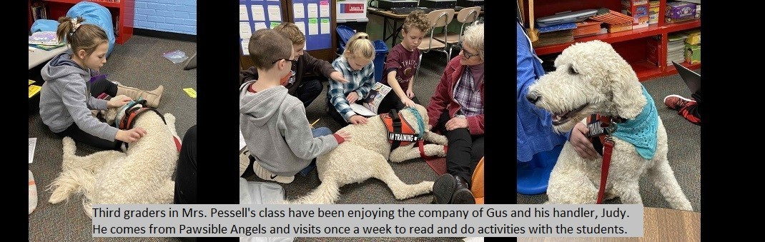Third graders in Mrs. Pessell's class have been enjoying the company of Gus and his handler, Judy. He comes from Pawsible Angels and visits once a week to read and do activities with the students.